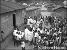 コンゴ共和国   活動ニュース   ...