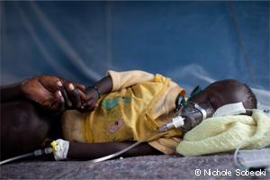 マラリア 病気の解説 海外旅行と病気.org